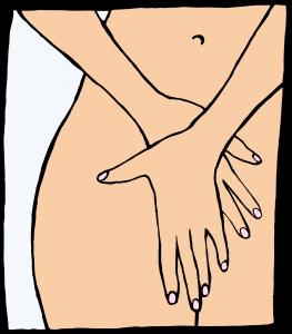 vagina, clitoris en schaamlippen