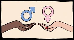 het geslachtsverschil